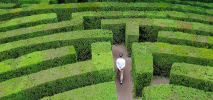 """""""Il labirinto lo costruisce la paura di essere giudicati"""""""